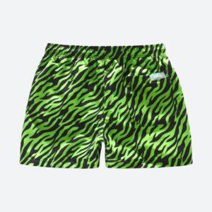 157 Ee781fdf67 5001 210 Thunder Swim Shorts B B Full